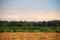 Vol d'avion au-dessus de zone Image libre de droits