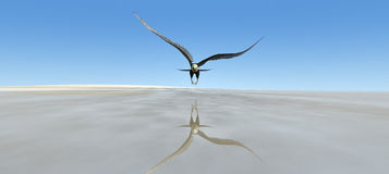 Vol d'Eagle illustration de vecteur
