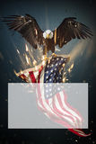 Vol d'Eagle chauve avec le drapeau américain Photographie stock