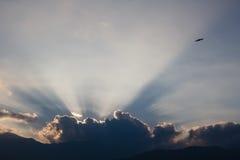 Vol d'oiseau dans le coucher du soleil brillant derrière des nuages Photos stock