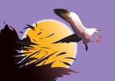 Vol d'oiseau de mouette Image libre de droits