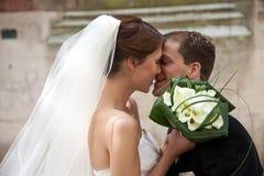 Vol d'un baiser Photo stock