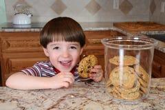 Vol d'un biscuit Photographie stock libre de droits