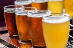 Vol de bière dehors en été Image stock