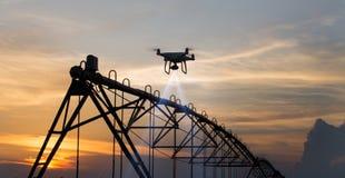 Vol de bourdon au-dessus de champ et de la cartographie Photo libre de droits