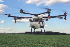 Vol de bourdon au-dessus de beau champ de vert de paysage Photographie stock libre de droits