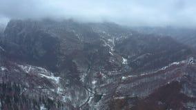 Vol de bourdon au-dessus des montagnes des montagnes avec des forêts banque de vidéos
