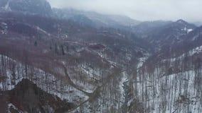Vol de bourdon au-dessus des montagnes des montagnes avec des forêts clips vidéos