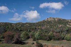 Vol de bourdon au-dessus de la terre tout en prenant des photos avec sa caméra intégrée photo libre de droits