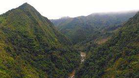 Vol de bourdon au-dessus de rivi?re de montagne en vall?e avec la for?t de pin autour, r?gion de Dalat, Vietnam banque de vidéos