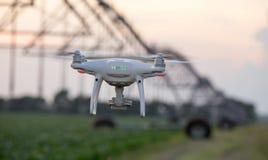 Vol de bourdon devant le système d'irrigation dans le domaine Images libres de droits