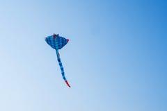 Vol de cerf-volant dans le ciel bleu Photographie stock libre de droits