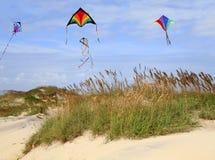 Vol de cerf-volant sur la plage Photographie stock