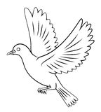 Vol de colombe Images libres de droits