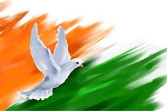 Vol de colombe sur le drapeau indien pour le jour indien de République Images stock