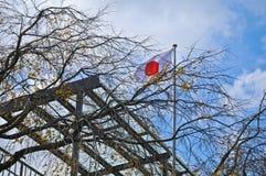 Vol de drapeau du Japon en ciel bleu Japon d'automne Photo libre de droits