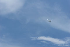 vol de Martin sur le ciel bleu Image stock