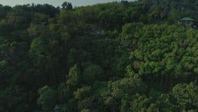 Vol de nature d'été de pilote de bourdon de suv de voiture de voyage de jungle de paume de la Thaïlande banque de vidéos