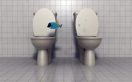 Vol de poissons entre les toilettes Images libres de droits
