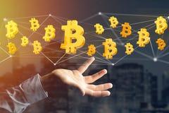 Vol de signe de Bitcoin autour d'une connexion réseau - 3d rendent Image libre de droits