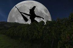 Vol de silhouette de sorcière de Halloween avec le manche à balai Pleine lune Vin Photographie stock libre de droits