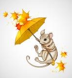 Vol de souris sous le parapluie Images libres de droits