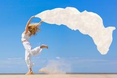 vol de tissu Image libre de droits