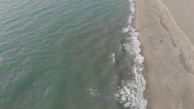 Vol de vue aérienne au-dessus du littoral avec des ressacs se brisant avec la mousse qui frappe le sable clips vidéos