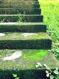 Vol des escaliers Photographie stock libre de droits