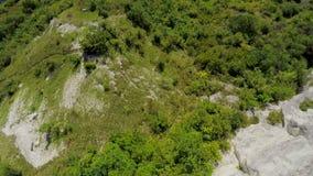 Vol merveilleux au-dessus de la forêt par la rivière large au coucher du soleil Vue aérienne de la forêt de pin en été au coucher clips vidéos