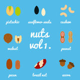 Vol 1. nuts and seeds icon set Royalty Free Stock Images