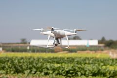 Vol plané de quadcopter de bourdon sur le fond de ciel, appareil-photo de bourdon, dans la ferme Photo libre de droits