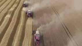 Vol rapide au-dessus du champ de blé Les moissonneuses recueillent le grain horizon clips vidéos