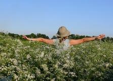 Vol sur le pré de fleurs blanches Image libre de droits