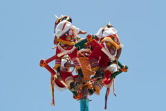 Voladores Stock Photos