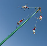Voladores de Veracruz Royalty Free Stock Photos