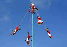 Voladores, or flyers, of Tulum Royalty Free Stock Photos