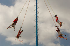 Voladores in Mexico Stock Photo