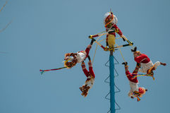 Voladores Stock Photo