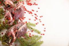 Volailles sauvages de chasse dans la cuisson E photographie stock libre de droits