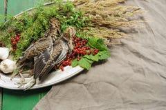 Volailles sauvages de chasse dans la cuisson Mensonge du coup de feu deux ou de la bécasse des bois sur le plat en métal Chasse d images libres de droits