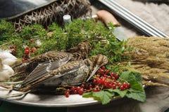 Volailles sauvages de chasse dans la cuisson Mensonge du coup de feu deux ou de la bécasse des bois sur le plat en métal Chasse d photo libre de droits