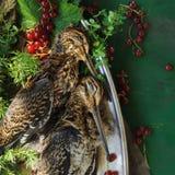 Volailles sauvages de chasse dans la cuisson Mensonge du coup de feu deux ou de la bécasse des bois sur le plat en métal Chasse d photographie stock libre de droits