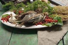 Volailles sauvages de chasse dans la cuisson Mensonge du coup de feu deux ou de la bécasse des bois sur le plat en métal Chasse d image libre de droits