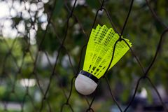 Shuttlecock with a white tip and a light green shank on the gaming, fenced net, site.  stock photos