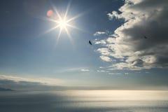 Volando con Eagles Immagine Stock Libera da Diritti