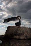 Volando nel vento Fotografie Stock