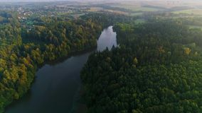 Volando sopra il lago nebbioso nelle prime ore del mattino stock footage
