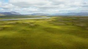 Volando su sopra il paesaggio fertile di estate all'Islanda stock footage