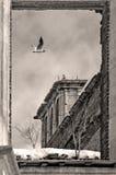 Volando vicino sopra la a oltre l'epoca Fotografia Stock